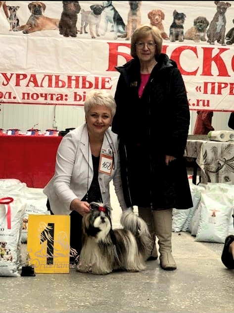 Новости из Ставрополя